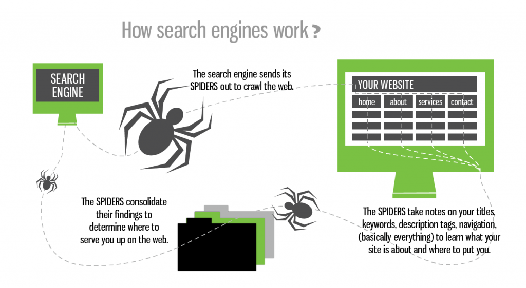 How search engine works ?