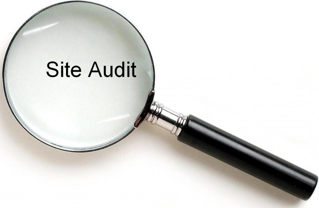 Website-Audit