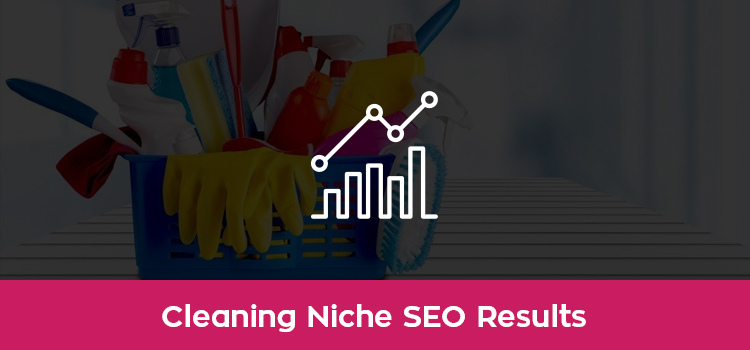 Cleaning SEO Case Study